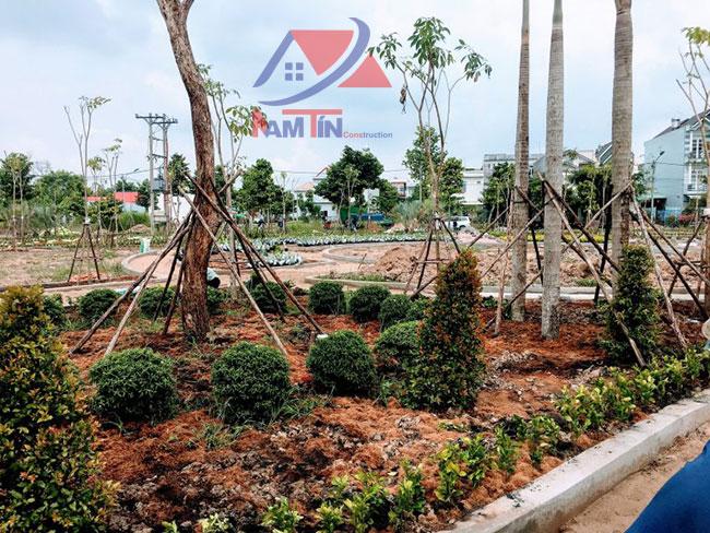 trồng cây xanh đẹp 19